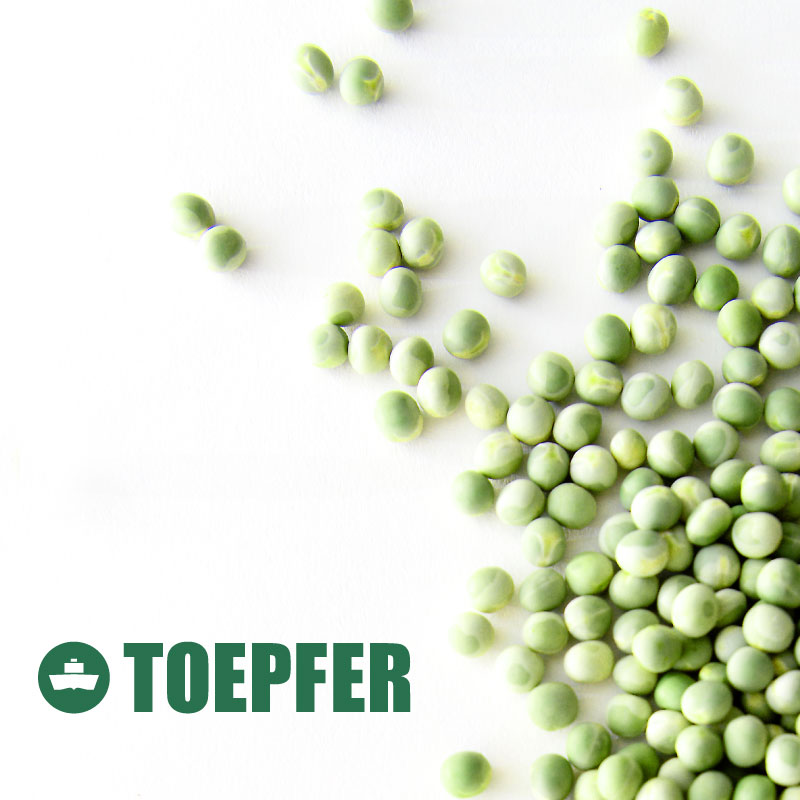 Toepfer International